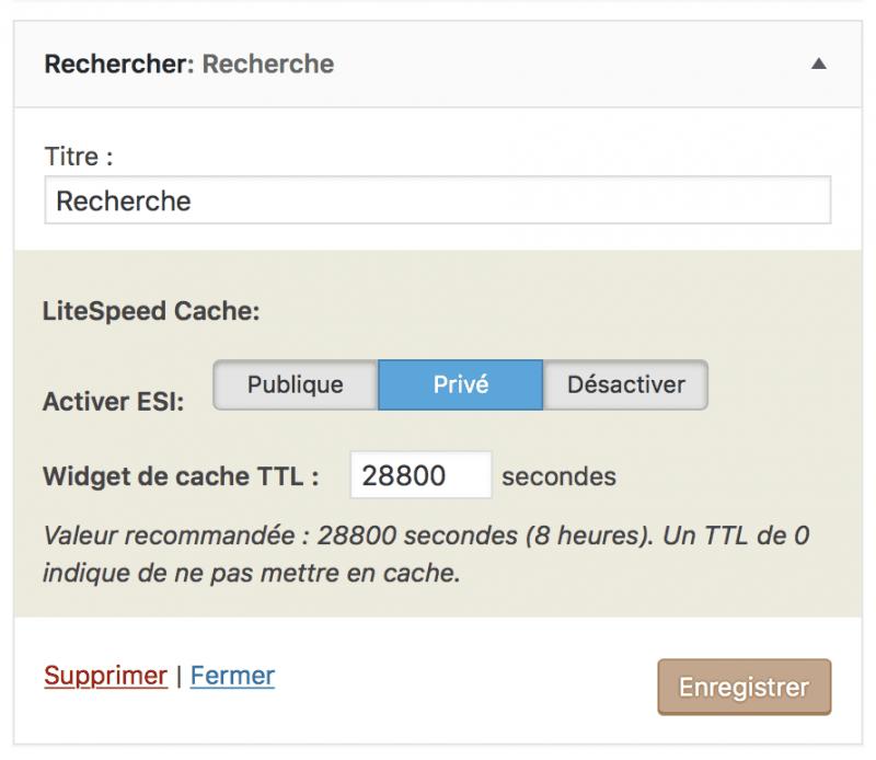 Gérer le cache d'un widget WordPress